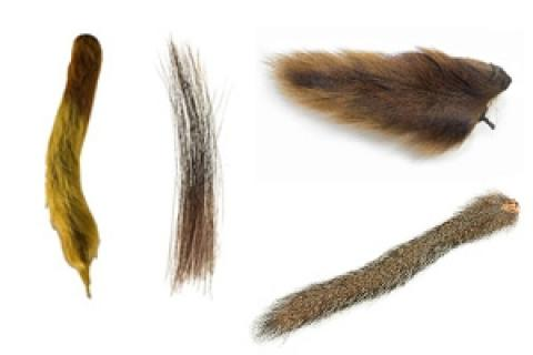 News & Tips: Tailing Materials for Fly Tying