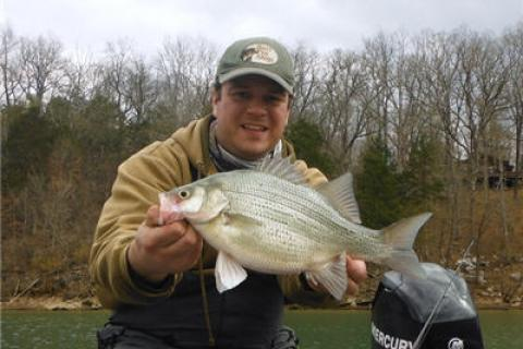 News & Tips: White Bass Spring Spawn Fishing Tip