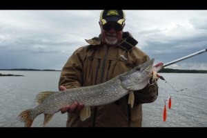 1Source Video: Spinnerbaits for Shallow Pike and Muskies