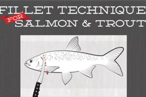 News & Tips: 5 Simple Steps to Fillet Salmon, Trout, Walleye, Striped Bass (infographic)...