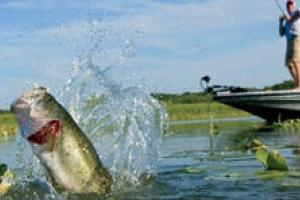 News & Tips: Spring Fishing: Edwin Evers 5 Tips for April Bass...