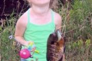 News & Tips: 5 Easy Ways to Make the Most of Summer Bluegill Fishing...