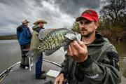 News & Tips: In Winter Catch Crappie Near Warm Water Discharge Outlets...